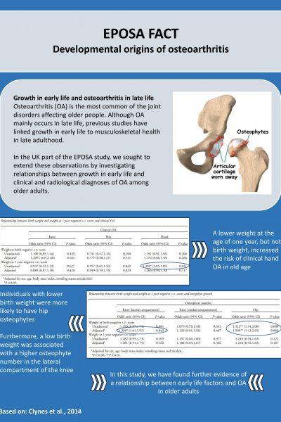 Developmental origins of osteoarthritis